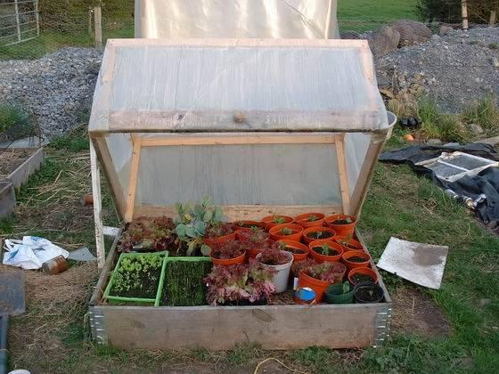 Casas cocinas mueble construccion invernadero casero - Invernadero para casa ...