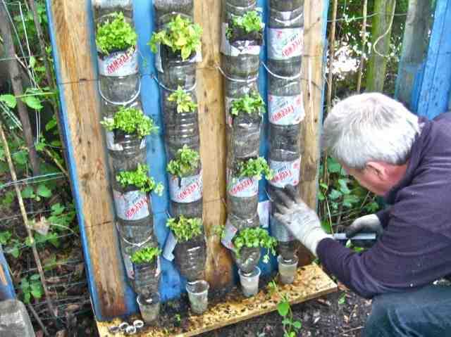 Haz tu propia huerta con botellas recicladas
